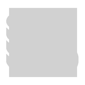 icon-speed-performance